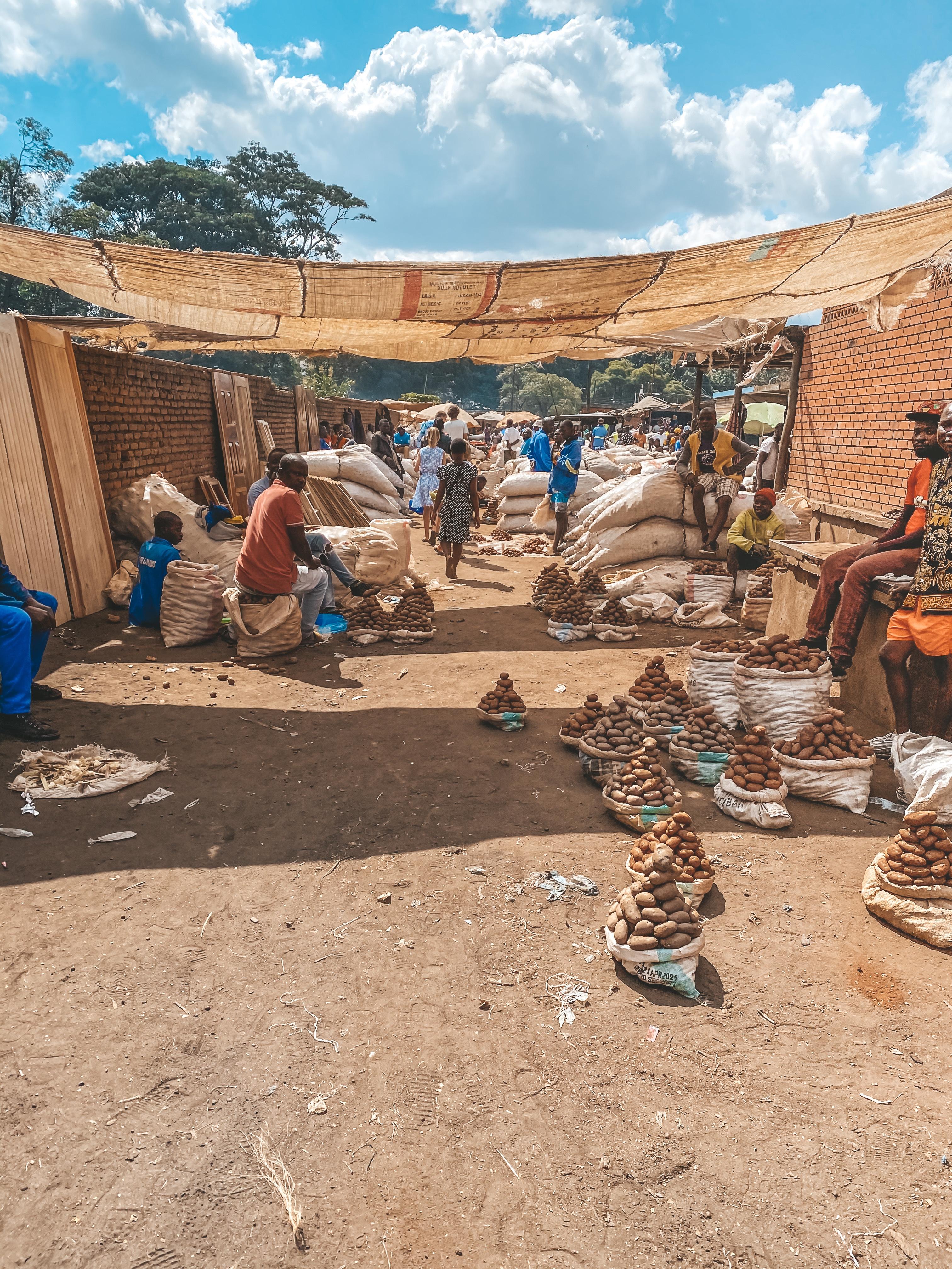 Week 11 | Hello Malawi